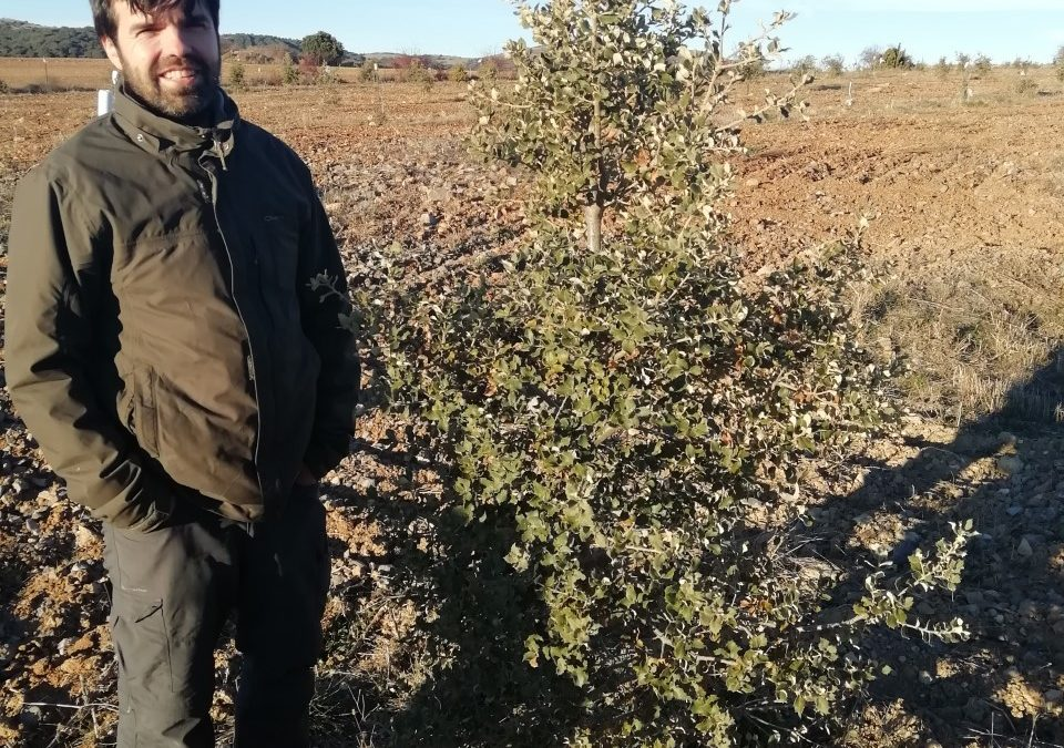 La truficultura como alternativa en la lucha contra la despoblación